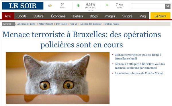 brusselslockdown-chatons-operations-anti-terroristes